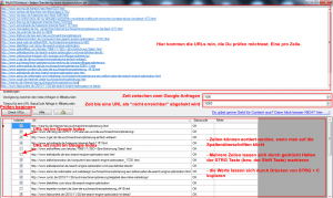 Screemshot vom Google Index Checker