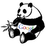Das Google Panda Update