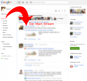 Der Google Plus Main Stream
