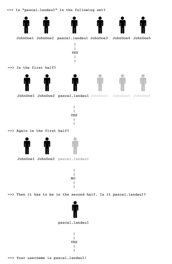 Binäre Suche auf einer Testmenge von Profilen